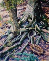 Larry Johnson artist, nature painting, landscape, fantasy painting