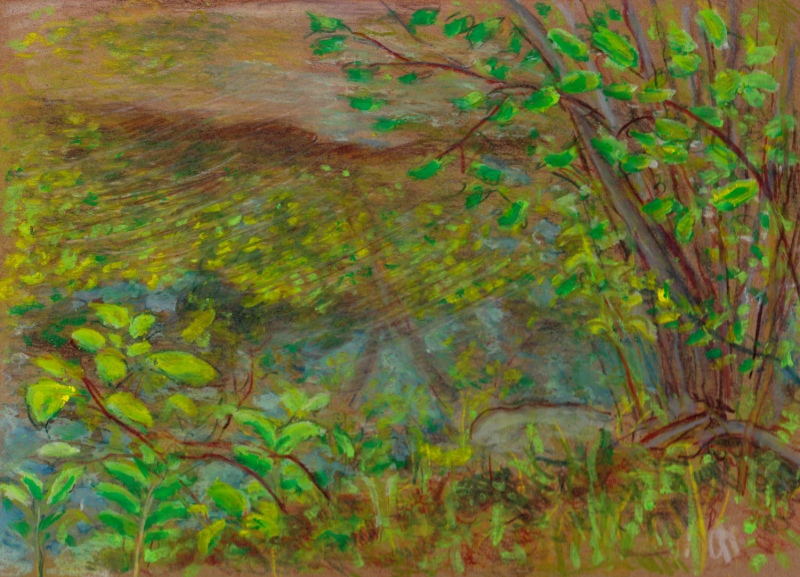 Larry Johnson artist, landscape drawing, neponset river, oil pastel, colored pencil