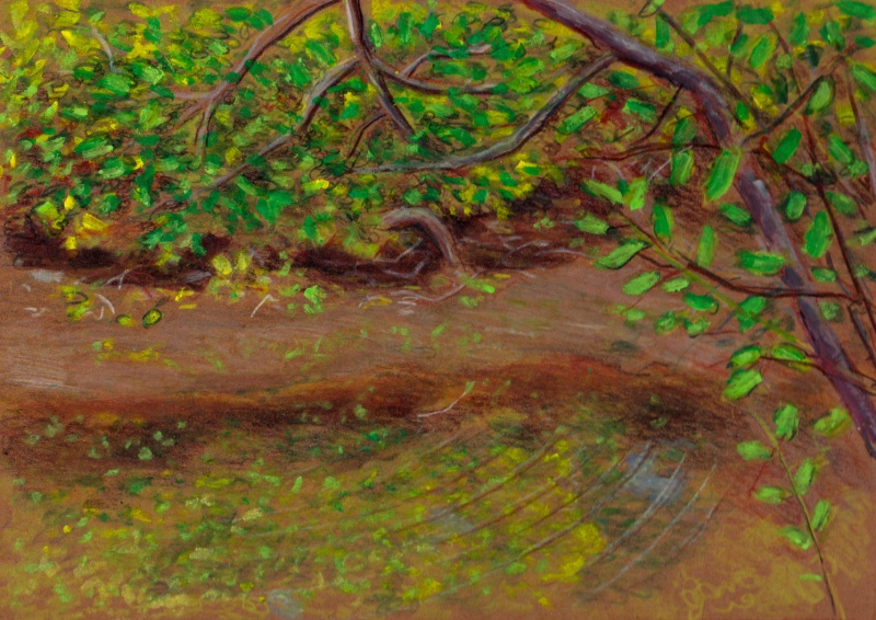Larry Johnson artist, landscape drawing,neponset river, oil pastel, colored pencil
