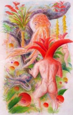 colored pencil octopus adust fix