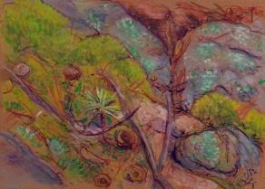 landscape 6-2-13