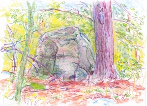 landscape 7-3-16