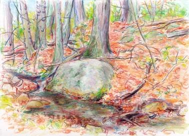 landscape stony brook stage 02 2-21-16